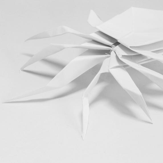 origami-spider.jpg